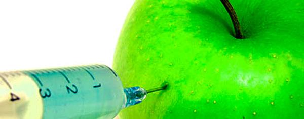 Alimentos Transgenicos exemplos
